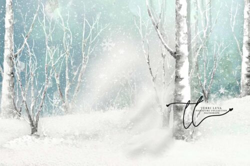 Backdrop of Winter Scene with snow and white birch trees
