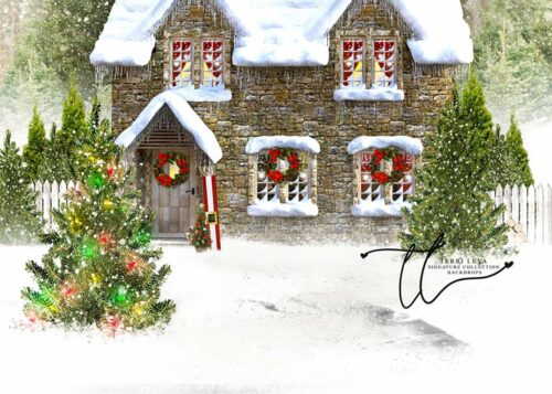 Christmas House Backdrop