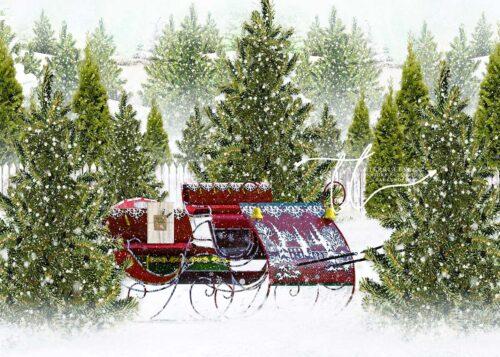 Backdrop featuring Santa's sleigh