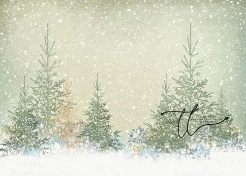 Backdrop featuring evergreen trees in snow