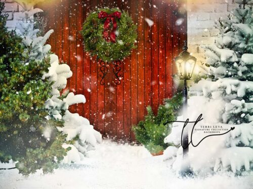 Backdrop featuring snow-covered porch with red doors