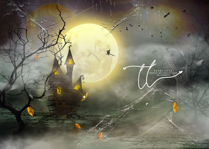 Halloween themed backdrop with full moon and fog covering a haunted house