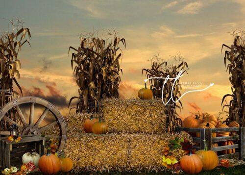 Pumpkin backdrop with haybales