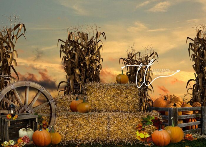 Pumpkin backdrop with haybales