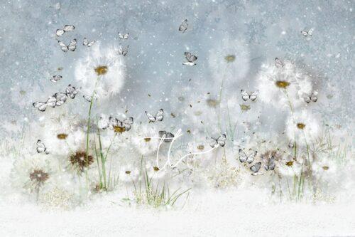 Winter Butterflies Backdrop